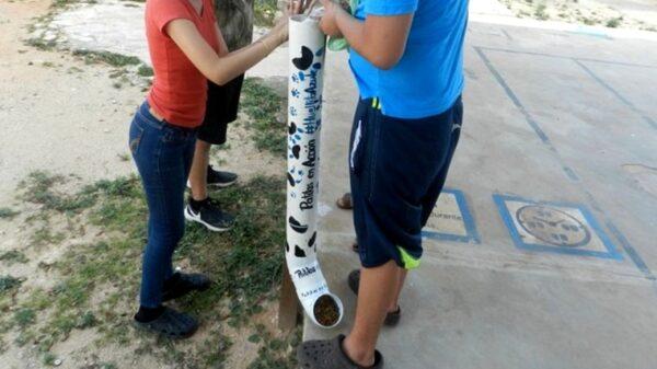 """Grupo """"Acción Juvenil"""" denuncia el robo de dispensadores de comida para perros de la calle en Peto"""