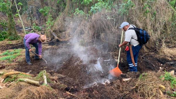 Brigadas comunitarias y Conafor liquidan incendios en Leona Vicario