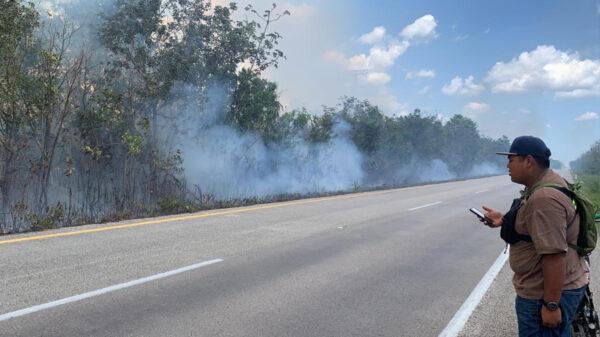Asolan incendios forestales a Puerto Morelos