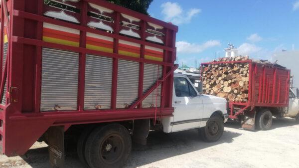 Decomisan cargamento de madera ilegal en Kantunilkín