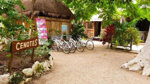 Busca diputada detonar turismo rural en Centro y Sur de Quintana Roo.