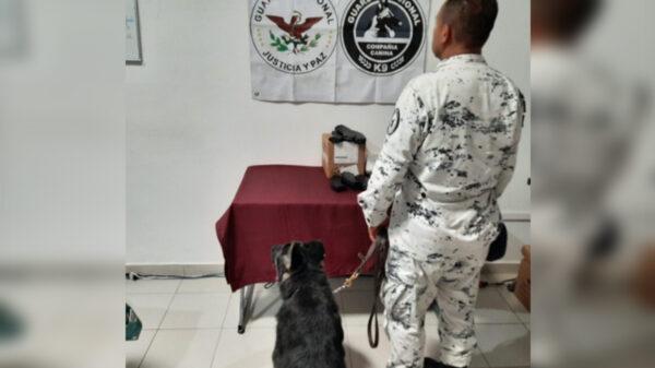 Guardia Nacional decomisa equipo para armas de fuego en paquetería de Cancún