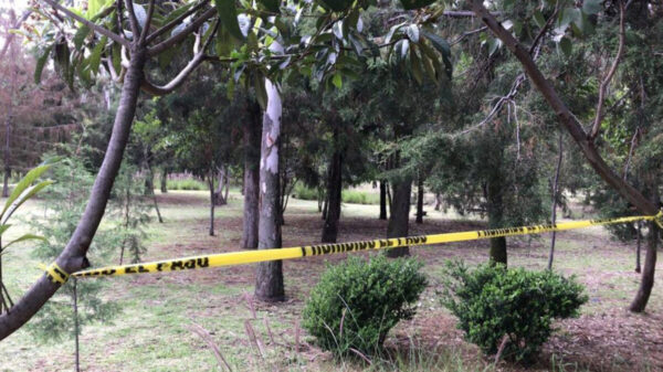 Dos adolescentes se suicidan colgándose del mismo árbol en Puebla