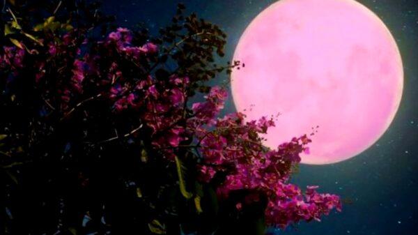 Este jueves 24 de junio no te pierdas la Luna de Fresa