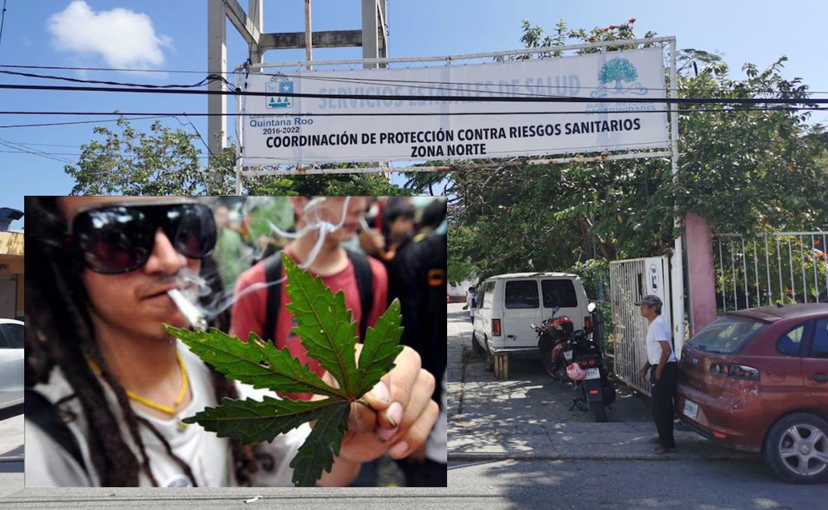 Solo una persona en Quintana Roo está autorizada para consumir mariguana