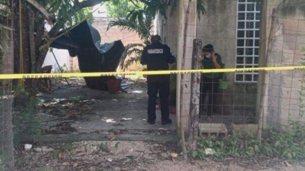 Hombre de 32 años muere tras caer de un árbol de 10 metros de altura en Valladolid
