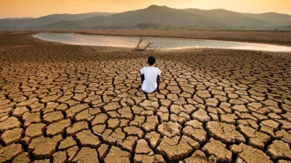 Video: Sequía, la pandemia que viene, advierte la ONU
