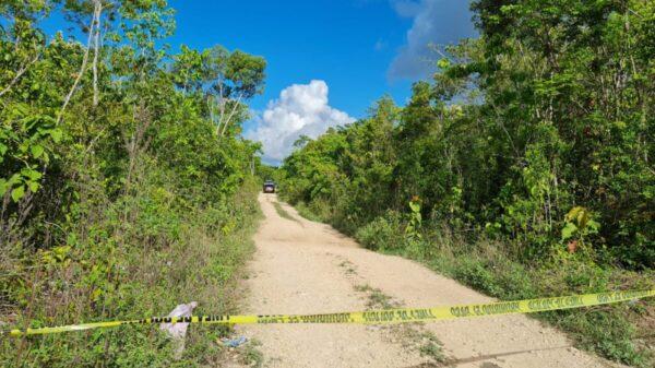 Cancún: Hallan cuerpos sin vida en Tres Reyes (video)