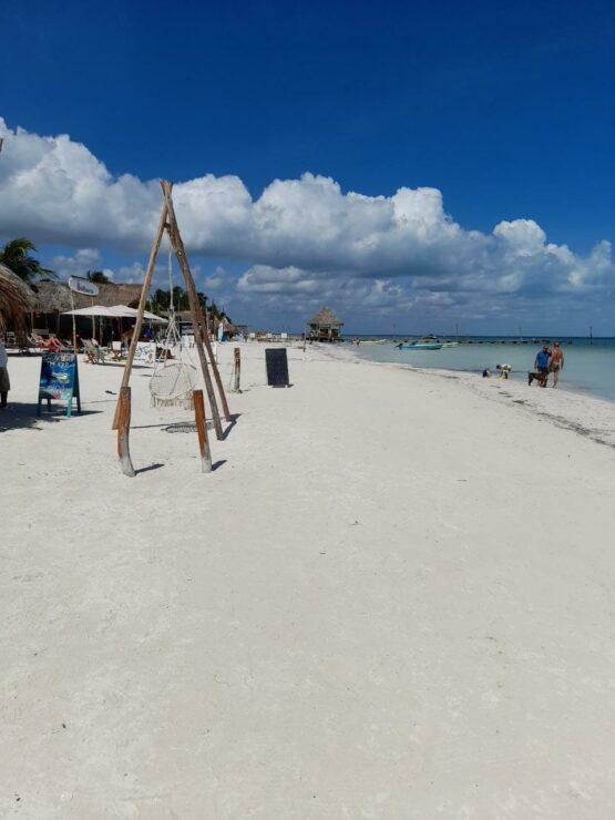 No hay problemas de sargazo en la isla de Holbox; turistas disfrutan de playas cristalinas con un clima agradable. La ocupación está al 50%.