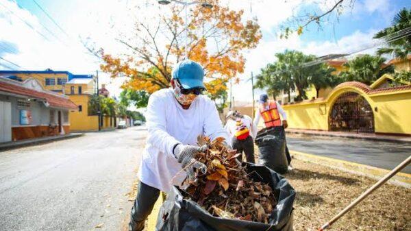 Suspende Pedro Joaquín programa de empleo temporal en Cozumel.