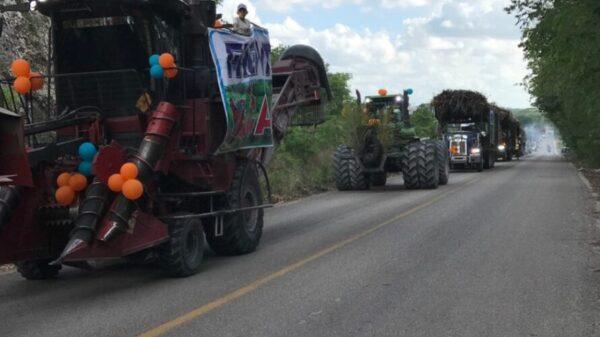Cañeros de Quintana Roo a punto de concluir zafra más larga de su historia.