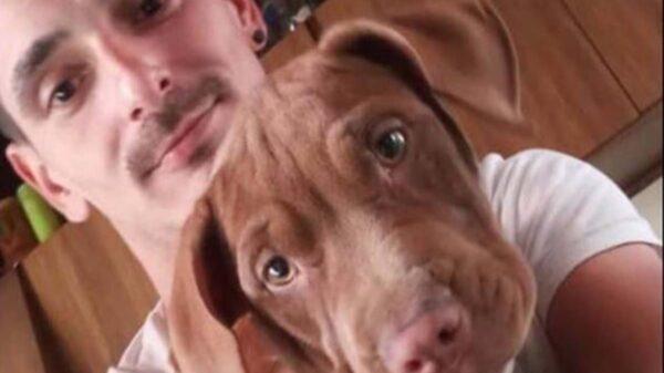 Tras el extraño rapto de su perrita pitbull, un joven de La Plata, Argentina, realizó una campaña en redes sociales para recuperar a la peluda