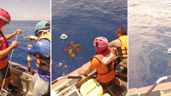 Quintana Roo: Liberan sondas para estudiar la trayectoria del sargazo.