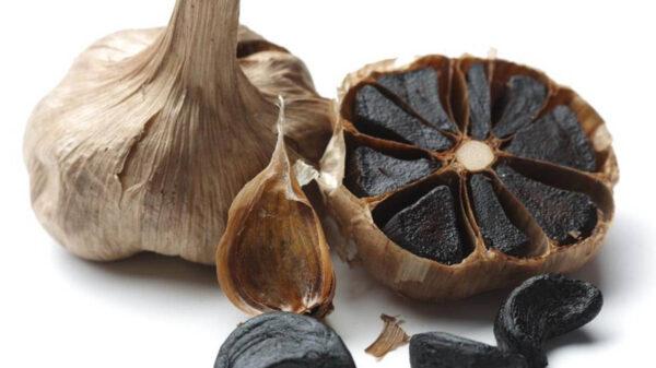 ¿Haz probado al ajo negro? ¡Te decimos los beneficios de consumirlo!