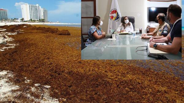 Redobla gobierno de Cancún coordinación para atención al sargazo