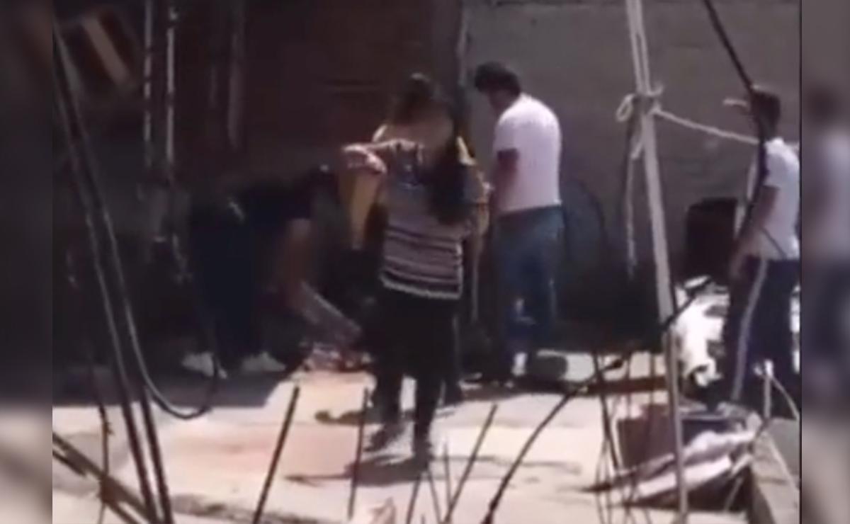 Video: Familia apalea a su perrito hasta matarlo