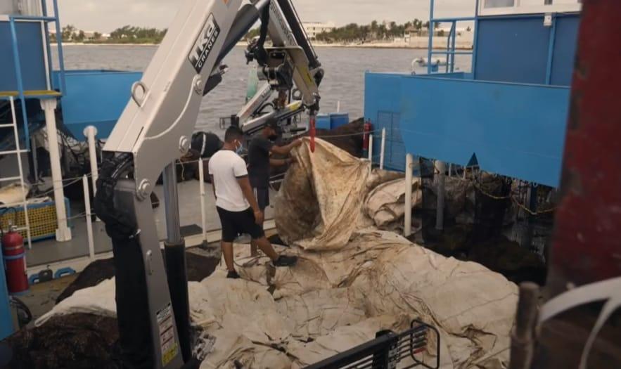 Quintana Roo: Recolectan del sargazo en el océano, costa y playas; participan 36q elementos de la Semar, 168 municipales y embarcaciones.