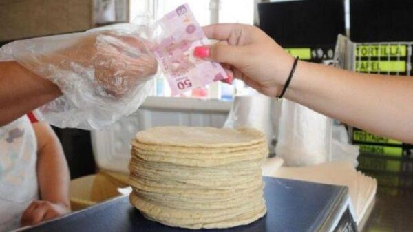 Cancún, entre las ciudades con el kilo de tortillas más caro.