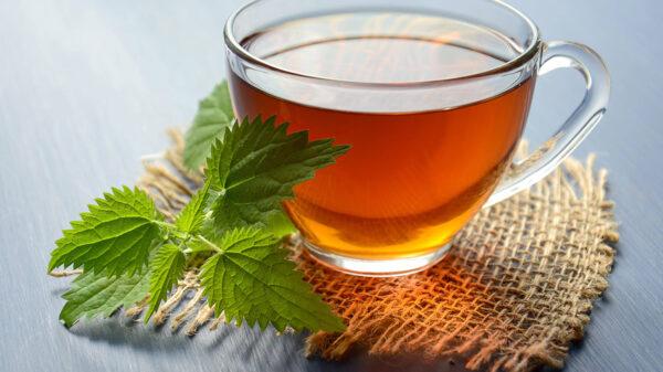 ¿Sabías que el té de orégano te ayuda a aliviar la tos? ¡Pruébalo ¡