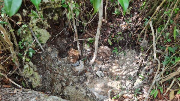 Encuentran cenote en Bonfil con más cuerpos (VIDEO).