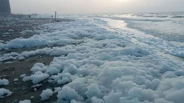 La espuma inusual que se concentra a los largo de la playa, ha causado curiosidad e incluso miedo entre los residentes de la zona