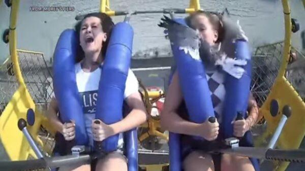 El día en el parque de diversiones que planeó una adolescente de EU, tuvo algún subidón de adrenalina extra al chocar contra una gaviota