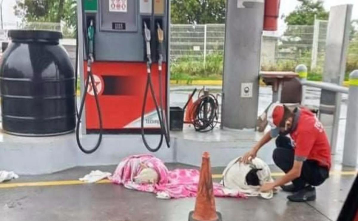 Un joven que ayudó a dos perritos dándoles una segunda oportunidad ha ganado popularidad, pues los rescato mientras trabajaba