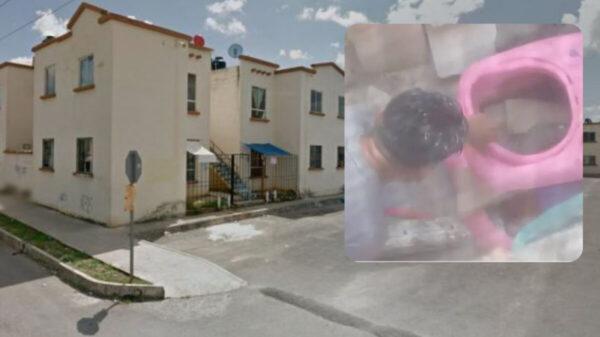Brutalidad humana: sujeto as3s!na a perrito en Villas OtochParaíso
