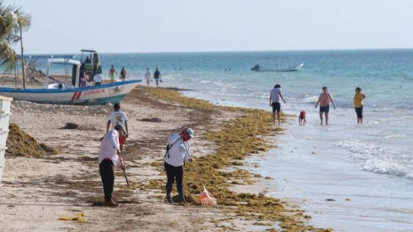 Recupera Puerto Morelos su imagen urbana y turística