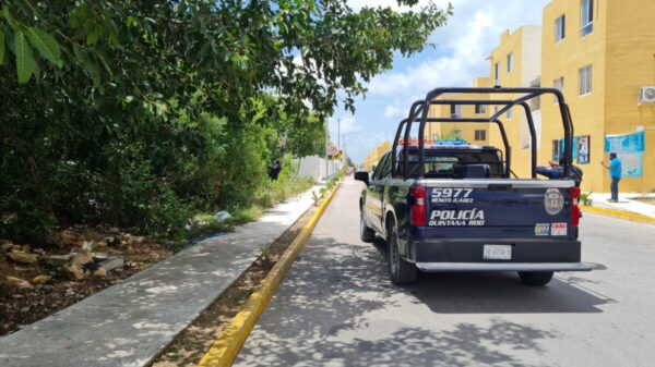 Cancún: Hallan presuntos restos humanos en Cielo Nuevo.