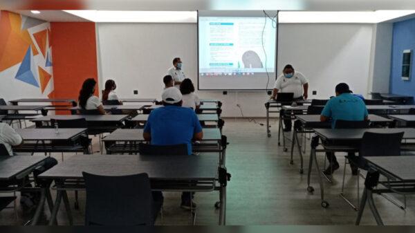 Concientización para la protección de los manatíes en Quintana Roo