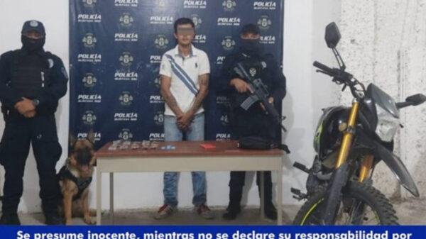 Cancún: Perro policía captura a a presunto narcomenudista