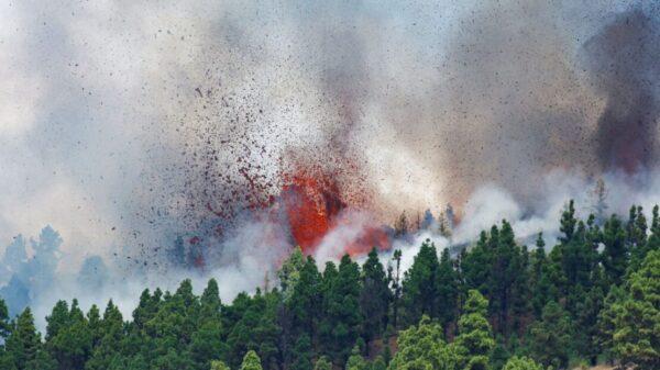 Entra volcán erupción en isla española de La Palma (VIDEO).