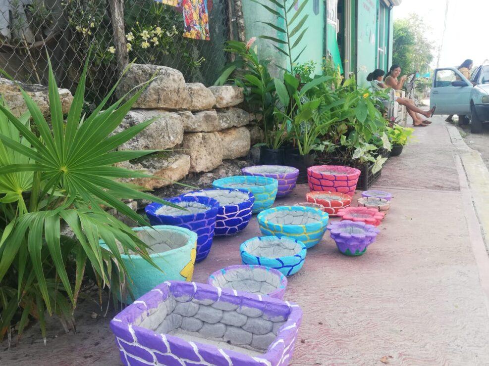 Buscan en Kantunilkín mercado para plantas de ornato; las ventas se desplomaron con la pandemia, por lo que dueños de viveros acuden hasta la cabecera municipal.