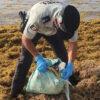 Aseguran tabiques de cocaína en una playa de Tulum.