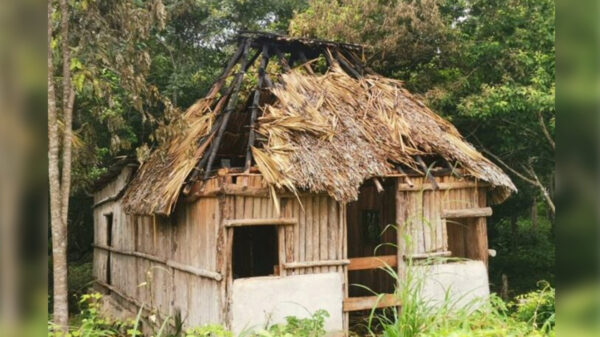 Pirómano incendia tres humildes palapas en JMM