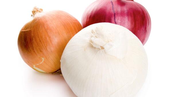 Alertan por brote de salmonelosis; lo relacionan con consumo de la cebolla