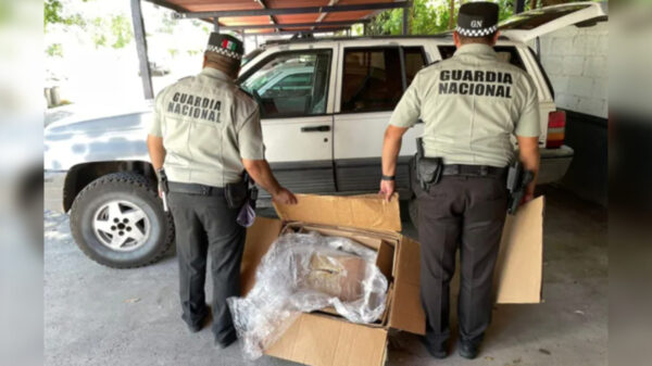 Decomisa Guardia Nacional paquete de mariguana en Chetumal