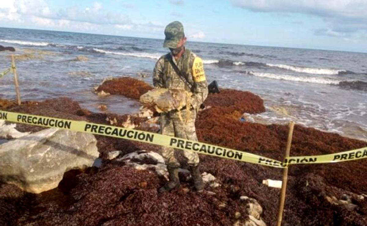 Sigue recalando droga en playas de Cozumel