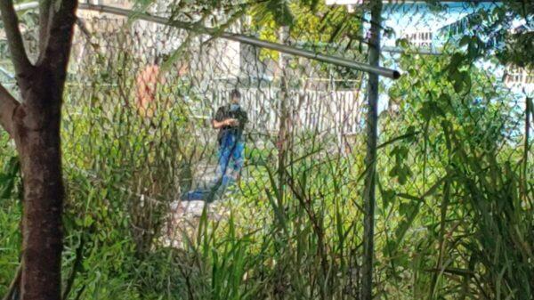 Cancún: Hallan a un sujeto ejecutado a balazos en la Región 247.