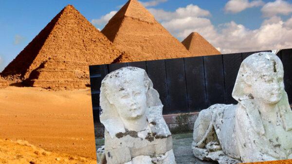 Video: Tenían dos esfinges egipcias auténticas en sus cacharros y no lo sabían